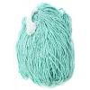 Seedbead 10/0 Chalk Light Turquoise Strung - Solgel